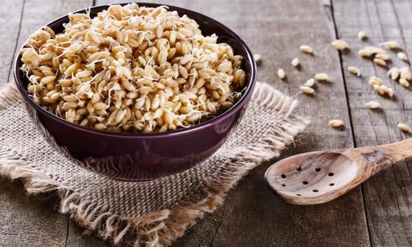 3 conseils santé sur le germe de blé | Trucs pratiques
