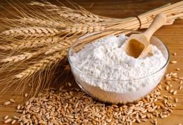 7 étapes faciles pourconnaître les différentes formes du blé et de la farine