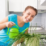 Trucsde propour l'arrosage des plantes en pots